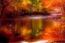 ♥ Autumn ♥
