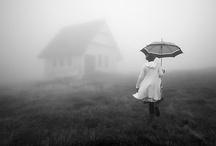 Fotografía II (blanco y negro)