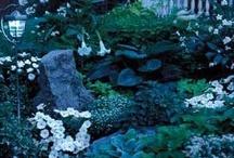 ♥ Cottage Moon Garden ♥