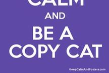 Copy Cat That / by Robyn Shearburn
