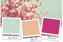 Color Inspiration / by In Flair Form Design Co.
