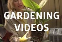 Gardening Videos / If looking for more guidance, check out some of our garden videos on plantersplace.com
