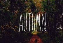 Autumn / by Kelly Hodge