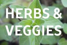 Herbs and Veggies / If you are growing your own veggies and need some helpful hints, check out our Just Veggies blog!