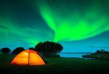 Glamping / Glamorous camping  / by Miranda Swanson