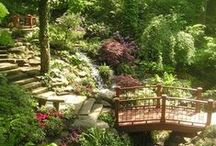 Garden Structures / by I Share My Pins!