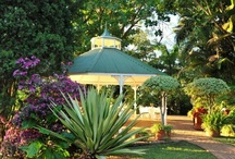 Highgrove House, Mpumalanga / Set in the heart of Mpumalanga and awarded Best Small Luxury Hotel in South Africa for three consecutive years, the Highgrove House combines distinctive accommodation with gourmet cuisine in a hideaway pastoral setting, a mere 4 hours from Johannesburg.