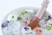 Bridal Shower / by Jenna Wollbrinck