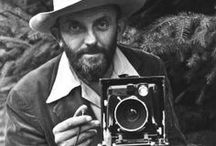 Photography | Ansel Adams / by Brian Miller