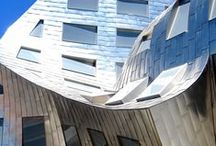 Architecture   Frank Gehry / by Brian Miller