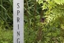 Vernal Equinox / spring bling in the garden