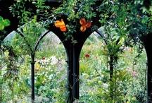 Garden Mysticism