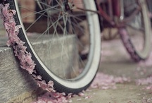 wind in my hair /  bicycle love / by Elle Moss