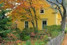 Cottage~Sunny Lemon Cottage / by Teresa Lewis