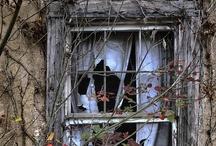 windows / windows, photography