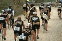 "L'Eroica, Italy / The ""Eroica"" in Tuscany is a non-competitive race, in which riders take vintage racing bikes"