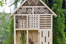 garden ideas / by Patricia Lester
