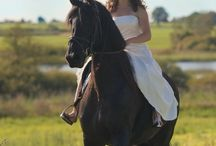 Everything Horses  / Horses-Tack-Barn-DIY Projects / by Dixie Timms