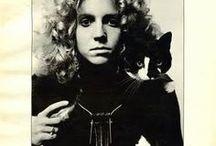 Cats & Cats & Cats