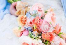 Wedding / by Amanda Sheppard