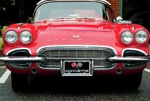 RED--RED--RED! / by B Novotney