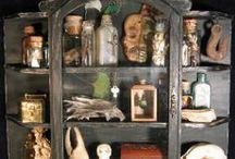 Cabinet of Curiosities / #cabinet of curiosities, #oddities, #bones collector