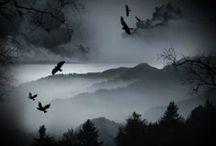Dark & Mystical Landscapes / Dark & Mystical Landscapes