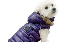 foufoudog® Fall & Winter 2015-2016 Collection - Apparel / foufoudog® was created in 2005 by founder and CEO, Cheryl Ng. Recognized as a leading brand of quality, fashionable and functional dog apparel, toys and accessories for little dogs. Sold globally in the pet specialty channel and online. Trending modern products for little canines.