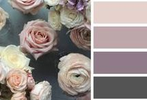 Colour Trends and Ideas