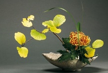 Ikebana  / Ikebana is the art of Japanese flower arrangement. I always looked forward to my weekly ikebana lessons from my sensei when I was still living in Japan.   / by Kitty Calico