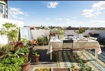 Outdoor Spaces / by Kitty Calico