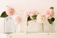 Pretty florals and plants