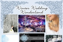 Wedding/Party: Winter Wonderland / Winter wonderland party inspirations that includes colors and themes of pure white snow, frosty blues, icy silver crystals, as well as, pinecone, evergreen and holly red for Christmas weddings.