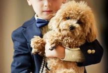 Little Princes & Ring Bearers  / Adorable outfits for the little princes and ring bearers.