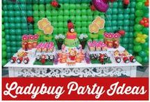 Kid's Party: Ladybug / Party planning inspiration for a ladybug themed party including, décor, favors, games and food ideas.