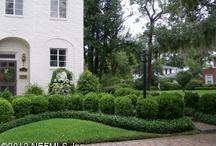 porch and garden / by Noelle Fernandez