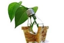Recycle Reuse Repurpose