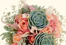 A Botanist's Wedding