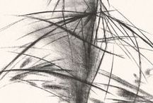 drawing and illustartion / by Sue Paul