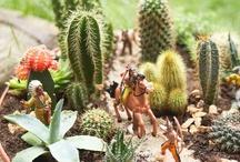 The Garden in Miniature
