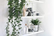 Indoor Gardening / by Annie Besancon