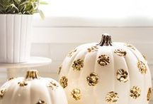Fall / Favorite fall recipes and crafts -- pumpkin desserts, apple pie and other beautiful ways to celebrate fall.