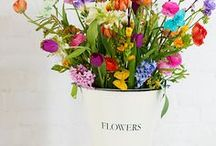 """Spring / Fun and bright Spring craft ideas and recipes to enjoy the season of """"new"""" and """"fresh""""."""