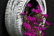 Pinks & Purples / Incorporating the colour pink into the garden.