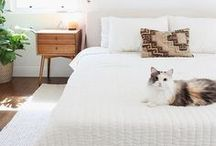 Bedroom Ideas / Keeping your room stylish and yet a sanctuary! Bedroom decorating ideas, tips and DIY!