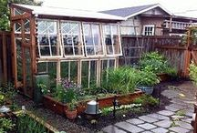 DIY Greenhouses Using Upcycled Materials / greenhouses can be made inexpensively using windows and doors!