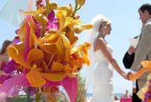 Savannah's Garden Outdoor Ceremonies