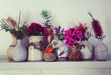 styling and still lives / Things arranged beautifully