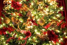 Christmas Cheer / Christmas in Traditional Colors of Red, Green, & Gold / by Sandra Norman
