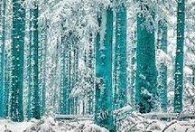 Color: Iced Aquamarine Tones / by Sandra Norman